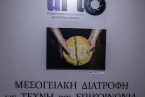 Mesogiaki diatrofi - 2015